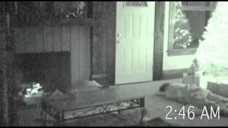 Paranormal Christmas