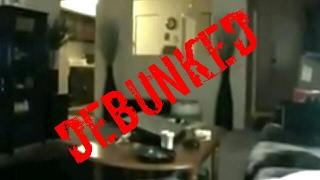 Ghost Footage of Ghosts Scaring Kittens Paranormal Activity Caught On Camera DEBUNKED