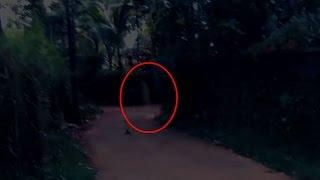 Scary Videos | Ghostly Shadow Caught On Camera | Haunted Road | Real Haunted Videos