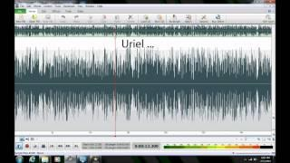 "Ghost/Haunting/EVP in Anne Arundel County, Maryland (""Uriel"")"