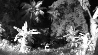 Ghost Hunters International - Ghoul's School: American Samoa