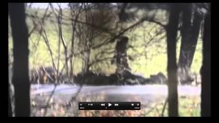 Clear Video Connecticut Bigfoot Breakdown