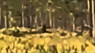 Florida Skunk Ape Caught on Film (2013)