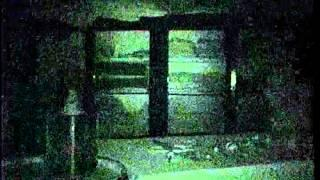 Old Fort Erie ~ Part 3 Jeff Beth & Leah.wmv