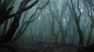 Ep. 156 - Hoia Baciu Forest