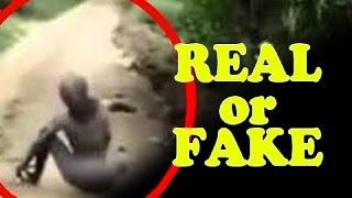 REAL or FAKE | Aliens and UFOs Caught On Camera COMPILATION.