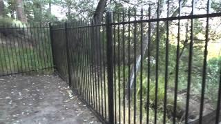 """Bowers Mansion Part 2 """"Cemetery Ghost Walk & Historic Tour With Lord Rick"""""""