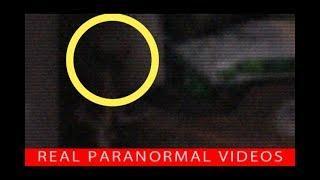 Homunculus Alien Hybrid Creature Bites Kid Caught On Camera. Real or Fake?