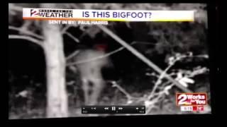 Hulbert, Oklahoma Bigfoot Breakdown