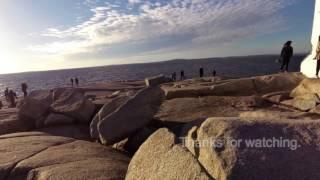 Peggy's Cove Investigation