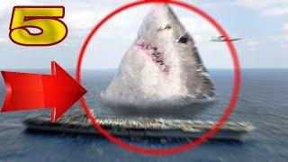 5 REAL MEGALODON SHARK SIGHTINGS CAUGHT ON TAPE & SPOTTED IN REAL LIFE