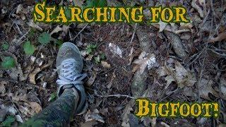 Searching for Alabama Bigfoot: Possible Tree Structures and Footprints