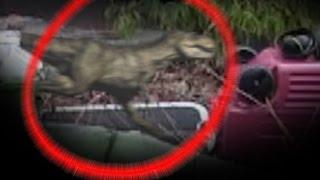 NEW Alive Baby Tyrannosaurs Rex Caught On Camera, Real or Fake. Real Alive Dinosaur 2017