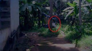 Ghost Caught On Video Tape | Ghost Behind Tree | Ghost Sightings 2015 | Scary Videos