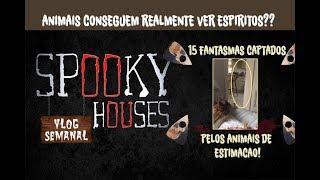 Análise Espiritual - 15 fantasmas captados pelos animais de estimação!
