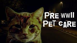 SCARY STORY - Episode 17 - Pre WWII Pet Care