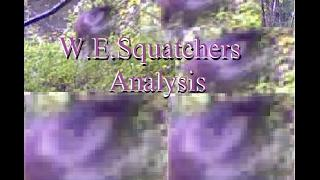 Alien or Gnome? in Tennessee Trail Cam: W.E.Squatcher's Analysis WR BRUCE Submission