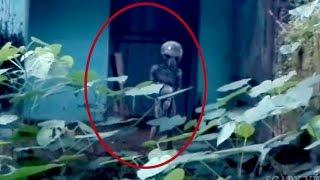 Strange Creature | Alien Caught On Tape | Scary videos | Ghost Caught On Camera | Real Ghost Videos