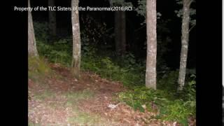 EVP captures several different voices talking at once
