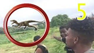 NEW 5 ALIVE DINOSAURS SPOTTED IN REAL LIFE CAUGHT ON CAMERA