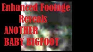 Enhanced Footage Reveals ANOTHER BABY BIGFOOT & Parents Watching!