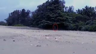 Haunting Scary Videos | Ghost Sightings In Haunted Beach | Paranormal Activity | Ghost Caught OnTape