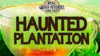 Haunted Plantation | Ghost Stories & Paranormal Podcast