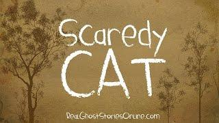 Scardey Cat | Ghost Stories, Paranormal, Supernatural, Hauntings, Horror