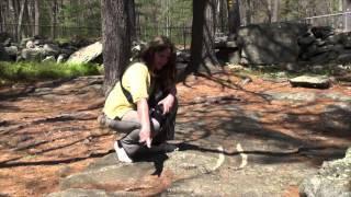 ZLP - Season 1 - Short - America's Stonehenge