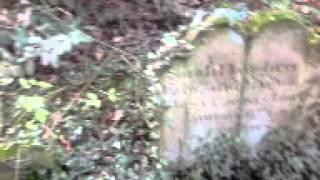 Alex in Halkyn Cemetery