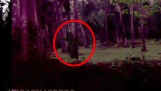 Creepy Monk Figure Caught From A Coconut Cultivation Area!! Real Ghost Paranormal Activity!!