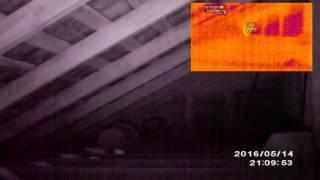 NTParanormal: Lipan Estate Teaser