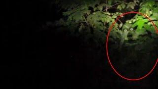 Ghost Like Figure Caught On Tape | Real Ghost Video | Scary Videos | Real Paranormal Story