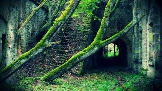 """""""Le Fort De Kronos"""""""