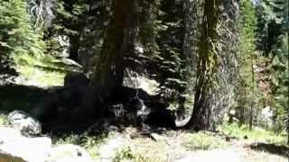 "Bear River Reservoir - Part 3 ""Strangeness In The El Dorado Forest"""