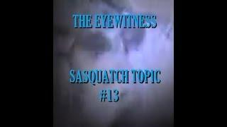 SASQUATCH Mother in Cave Video #1 No Way T E S T #13 PairEYEdolia series