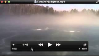 Screaming Bigfoot Breakdown