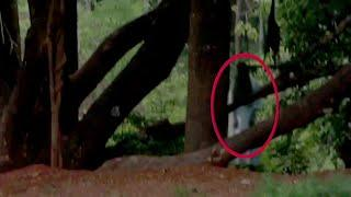 Ghost In Forest!! Huge Ghost Caught On Tape 2018!!