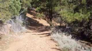 """Colorado Hill And Mogul Peak   Part 7 """"In The Thick Of Things"""""""