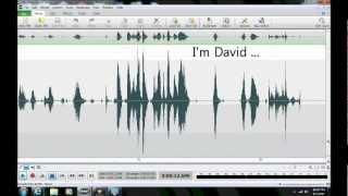 "Ghost/Haunting/EVP in Anne Arundel County, Maryland (""I'm David"")"