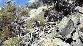"Jobs Peak - Part 43 ""Rock Spires Atop Of Wades Point"""