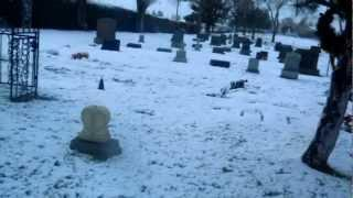 "Our Mother Of Sorrows Cemetery - Part 1 ""In The Cold Light Of Day"""