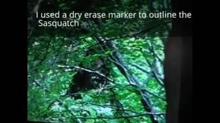 Beautiful Bigfoot in BIGFoot Sasse Video