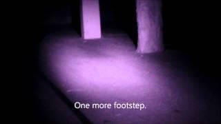 Inner Light Paranormal second investigation 1st night at barn June 2014