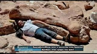"""Ότι πιο...""""φευγάτο""""!!!Αν ισχύει όμως;;Απολιθωμένος σκελετός δράκου στο Ιραν!"""