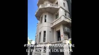 #TrasnochePop EL PALACIO DE LOS BICHOS EN VILLA DEL PARQUE AHORA