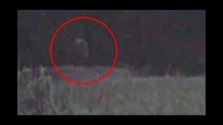 Ghost Caught On Video at Gettysburg