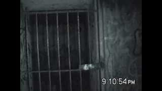 New Bedford Paranormal(East Coast Haunts Episode 3 with Raven Investigation of the Paranormal)