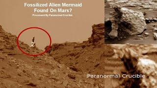 Fossilized Alien Mermaid Found On Mars?