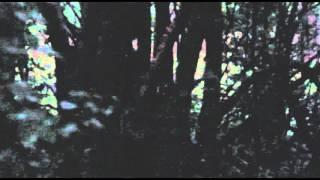Truckee California Bigfoot Sighting Send In Enhanced and Stabilized